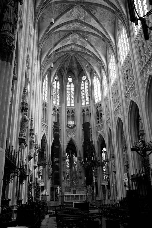 Sint-Janskathedraal - omgezet naar zwart-wit