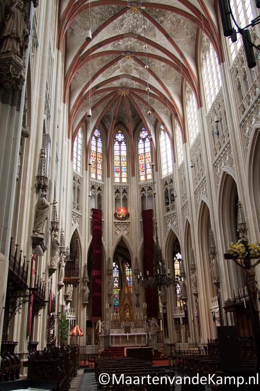Sint-Janskathedraal in kleur