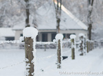 Winter in Barneveld 2012