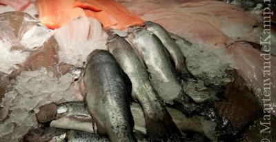 Impressiefoto - Vishandel De Lunterse Beek